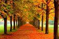 Koniec lata i pierwszy dzień jesieni 2016