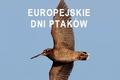 Zaproszenie na Europejskie Dni Ptaków